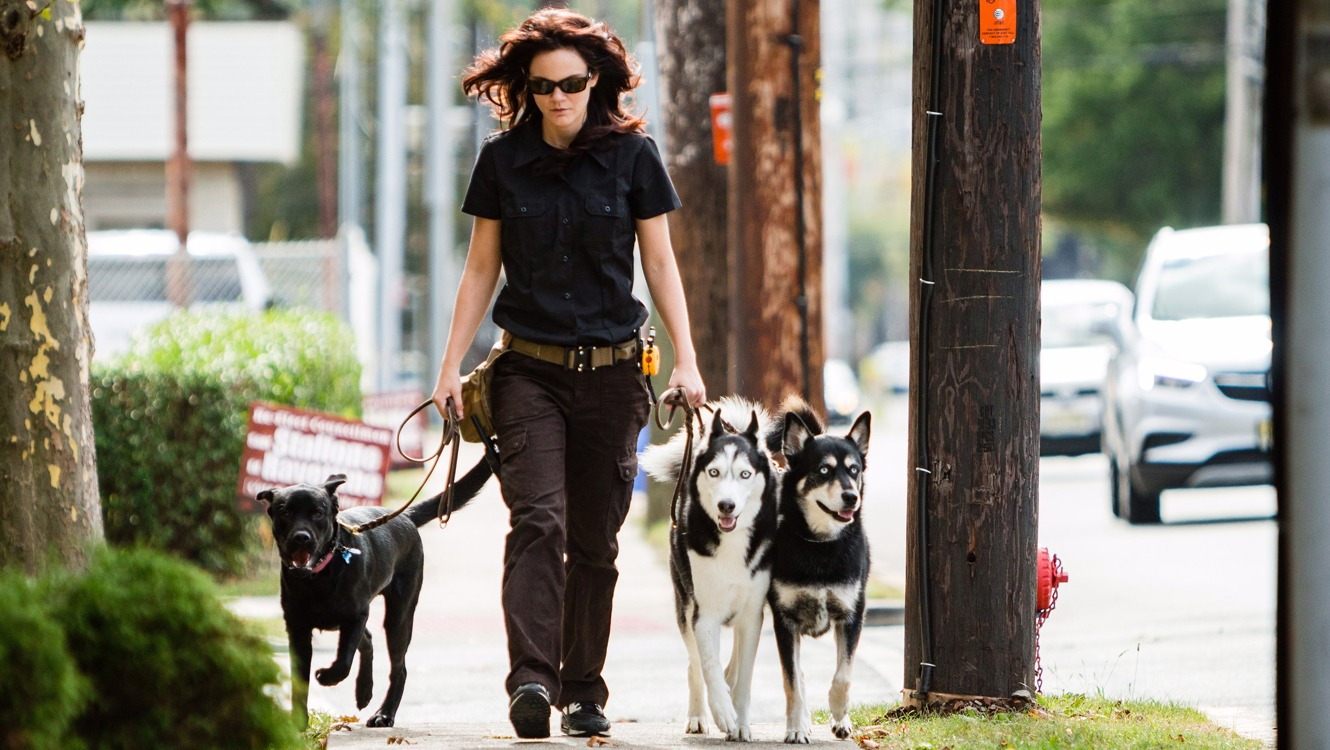 Emily going for a pack walk with dogs in her training programs